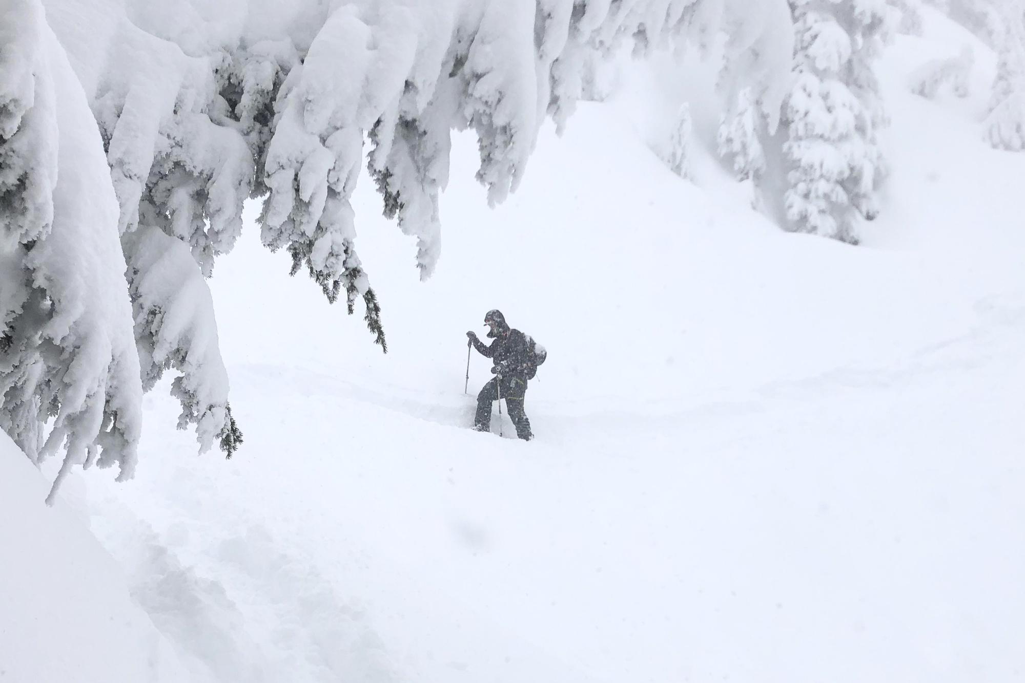 Mt. Baker, WA, snowboarding