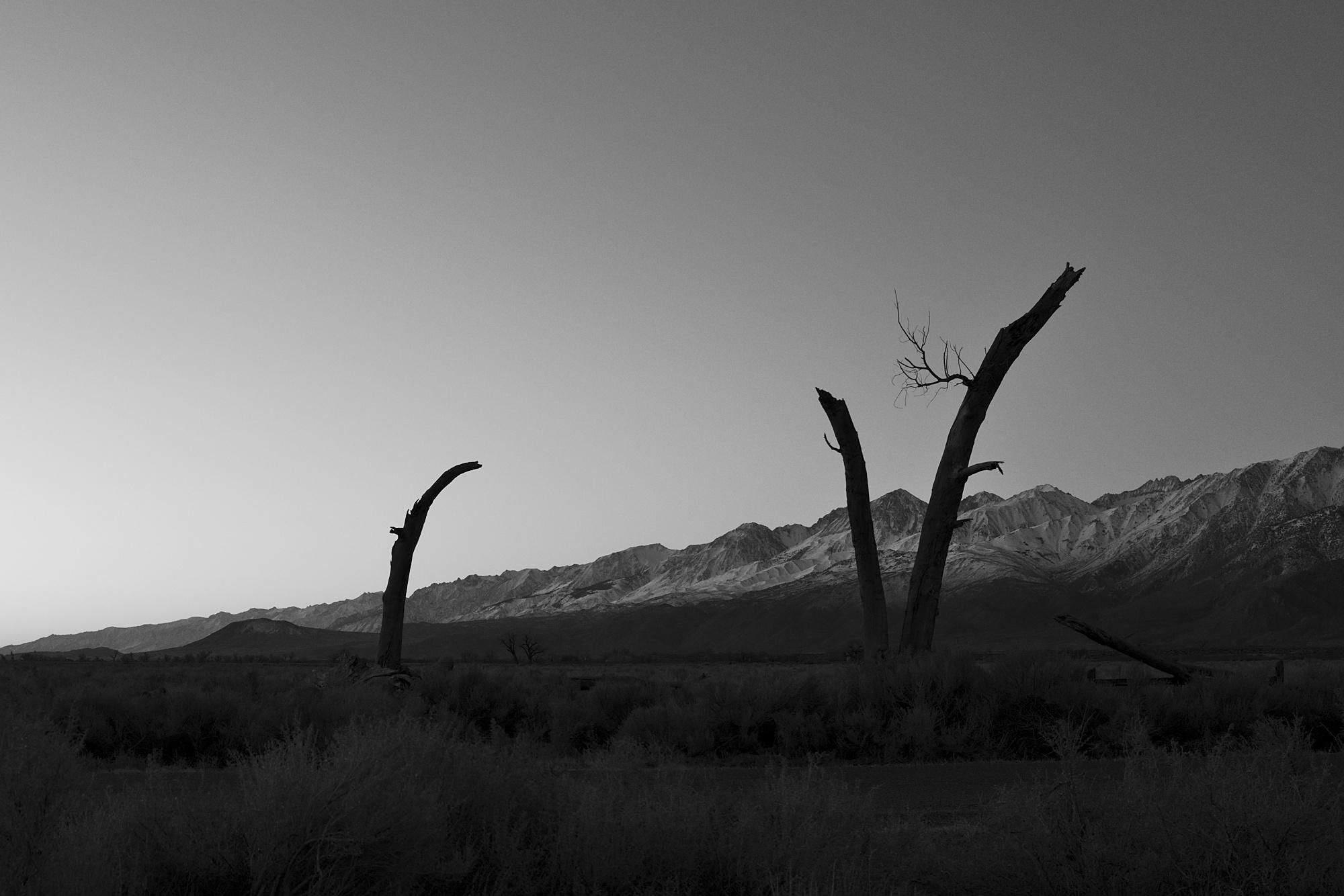 Bishop, CA, b&w, landscapes
